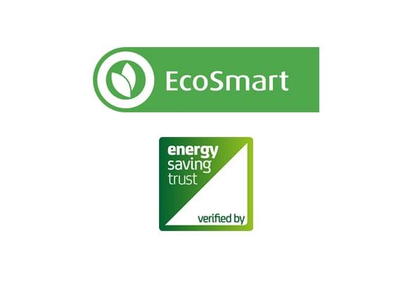 EcoSmart WMX86231W