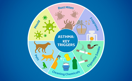 Asthma proof your home