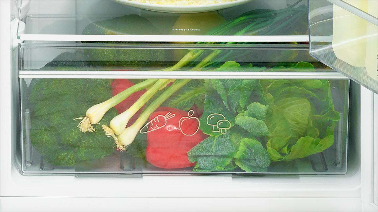 Large Salad Crisper